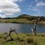 Viagens aos Açores